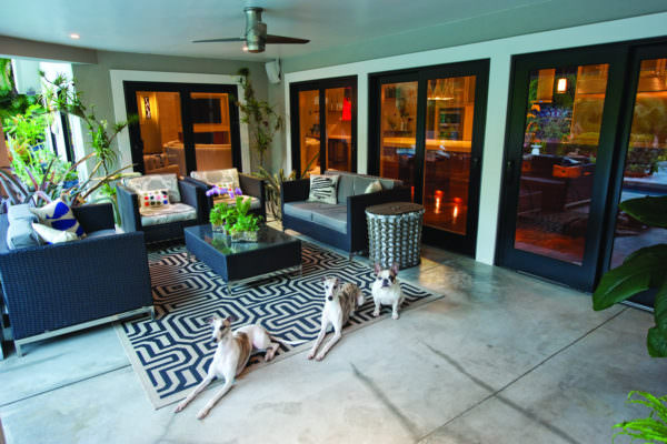Lanai with Dogs